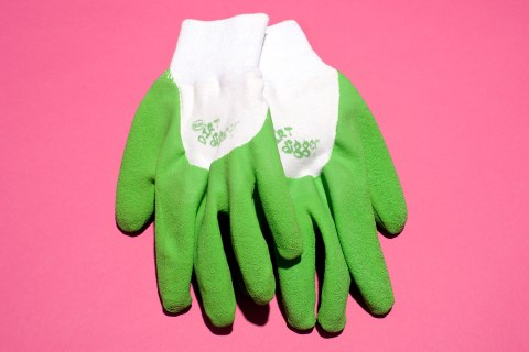 brtools_obama_gloves.jpg